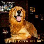 ARYA ROCK - EL PERRO DEL BAR