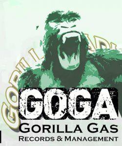 GORILLA TOP25